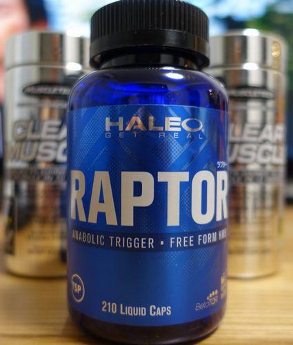 HALEO RAPTOR(ラプター)